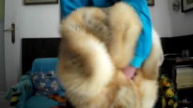 Fucking Fluffy mom's golden fox fur in her living room